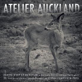 ATELIER AUCKLAND 8
