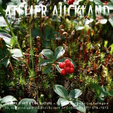 AtelierAuckland4T